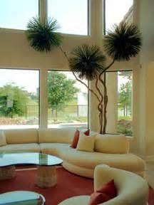 plants for home decor decoraci 243 n de interiores con plantas plantas hoy