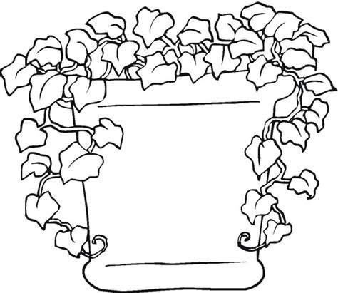 Life Cycle Of A Plant Coloring Pages Plants Coloring Page