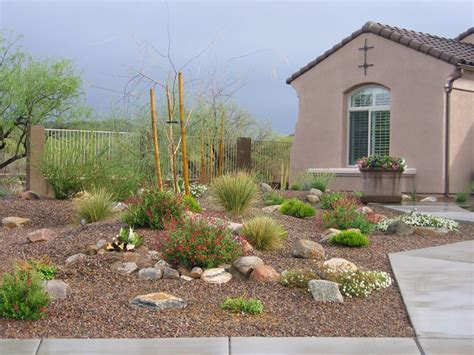 tucson landscape ideas tucson pool ideas valley oasis