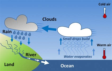 simple water diagram simple diagram for water cycle gallery how to guide and
