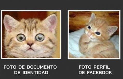 Fotos Bacanas Para Perfil | fotos de perfil para facebook imagenes para perfil de