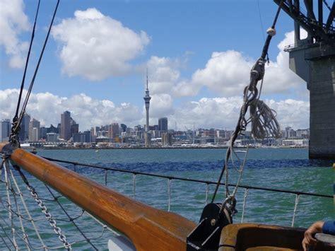 boat cruise wellington harbour 12 stunning backpacker cruises in new zealand backpacker