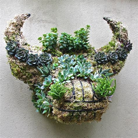 Moss Planters by Garden Ideas And Wall Planters