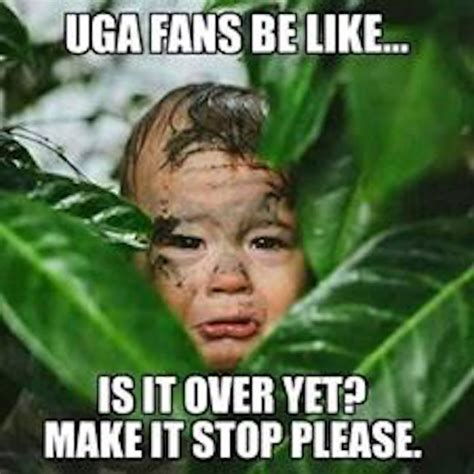 Georgia Bulldog Memes - image gallery georgia memes