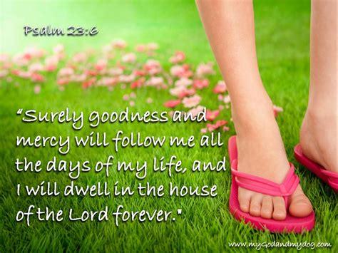 my dog follows me around the house psalm 23 6 my god my dog hamish