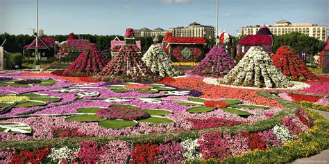 discover dubai miracle garden with kids