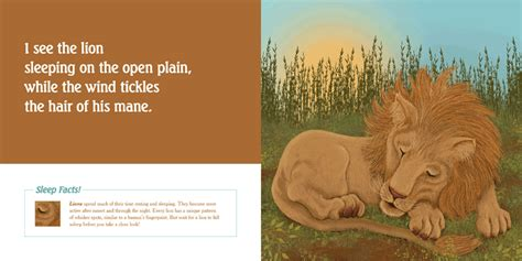 peace animal bedtime story books books i see the animals sleeping a bedtime story