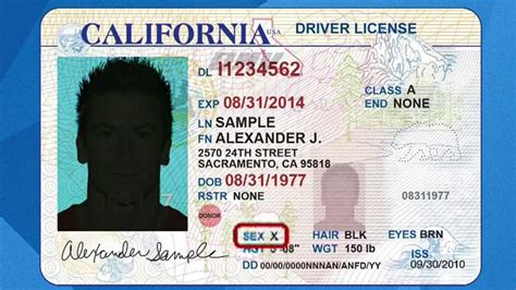 california id card template california could be in line for gender neutral