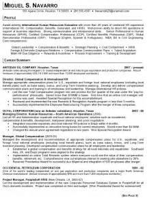 executive resume writing service india