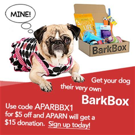 arizona pug rescue arizona pug adoption rescue network aparn arizona pug rescue