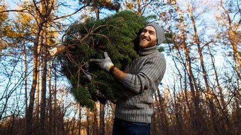 philadelphia streets department announces christmas tree