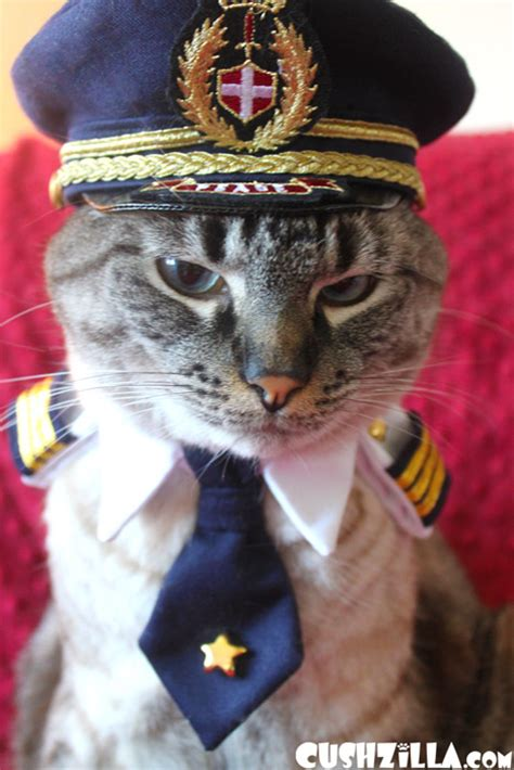 captain cat pilot hat for cat in small from cushzilla