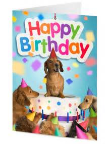 image gallery happy birthday weiner dog