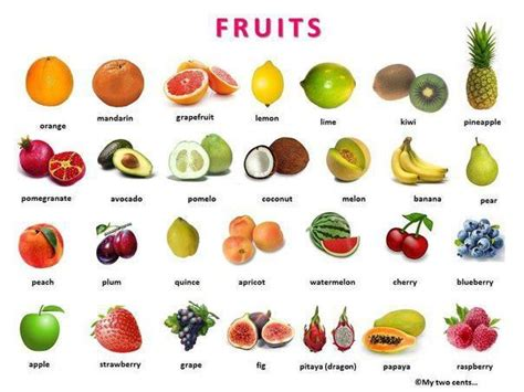 a z name that fruit and vegetable books fruit berries and vegetables with pictures and a word list