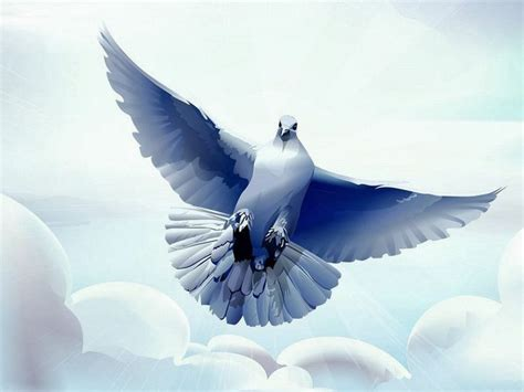 imagenes de palomas blancas grandes esta imagen simboliza la paloma de la paz espiritu