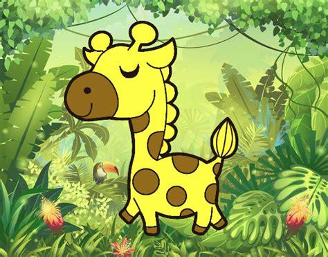 la giraffa vanitosa la giraffa vanitosa 28 images la giraffa vanitosa