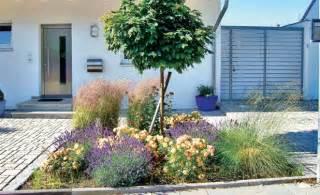 Pflegeleichte Gartenbepflanzung by Pflegeleichte G 228 Rten Lavendel Und Gr 228 Ser Windig
