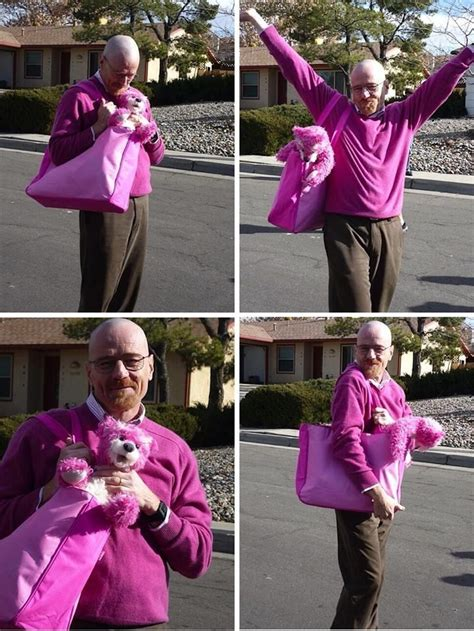 bryan cranston pink out take photos of bryan cranston and the iconic pink bear