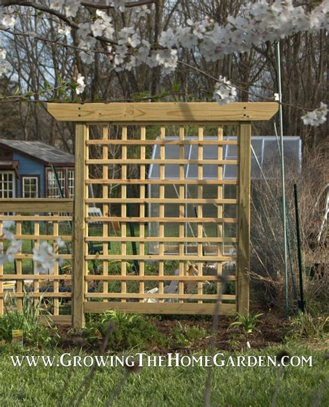 building trellises building an arbor style trellis growing the home garden