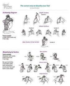 hair sectioning diagrams