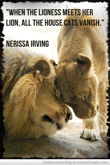 film when the lion feeds lion and lioness quotes quotesgram