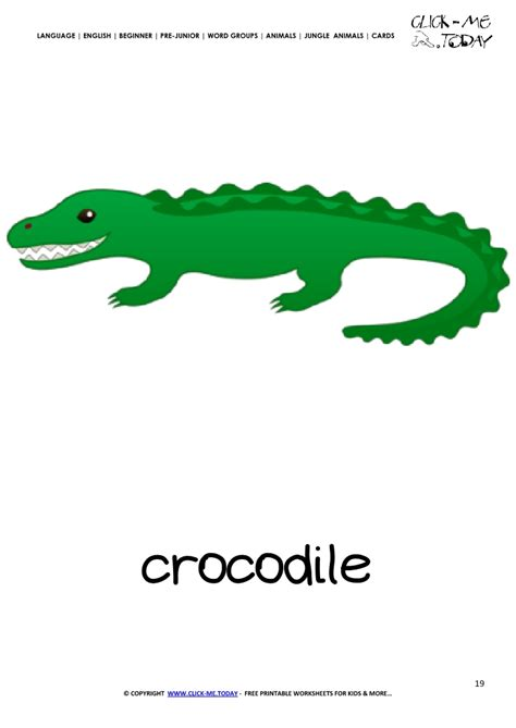 jungle animal flashcard crocodile printable card