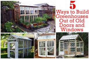 Ways to build greenhouses out of old doors and window gardening