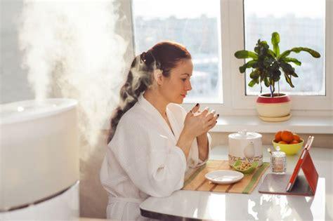 ideale luftfeuchtigkeit in der wohnung optimale luftfeuchtigkeit f 252 r gesundes raumklima