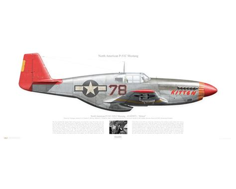 p 51c mustang aircraft profile print of p 51c mustang quot kitten