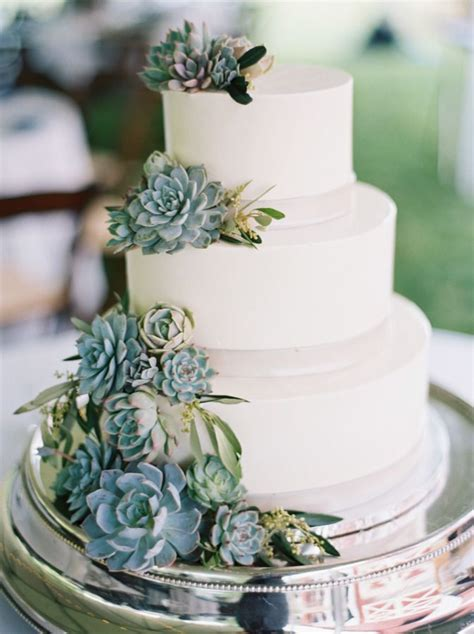 25  best ideas about Succulent wedding cakes on Pinterest