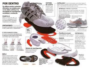 que son los zapatos de un pastor zonas de un zapato deportivo para correr anatomia