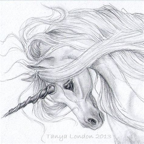 Drawing W Pencil by Realistic Unicorn Drawings Unicorn Drawing In Pencil