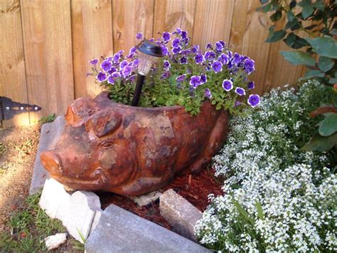 outdoors pig lawn ornament on pigs planters