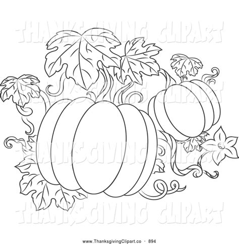 coloring pages of pumpkin vines drawn ivy pumpkin pencil and in color drawn ivy pumpkin