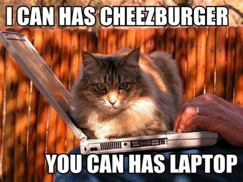 Cheezburger Cat Meme - chasery ti s blog zach i can has a cheezburger