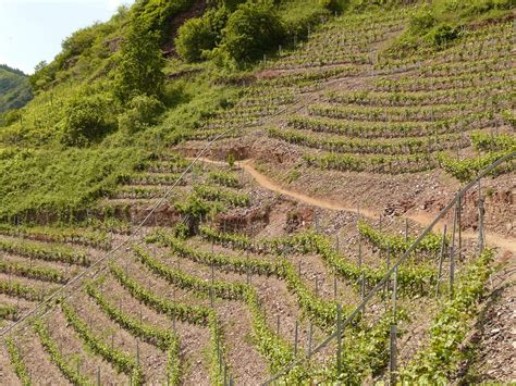 erosion control on steep slopes and embankments find my
