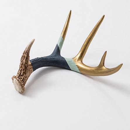 antler home decor navy gold antler eclectic home decor by terrain