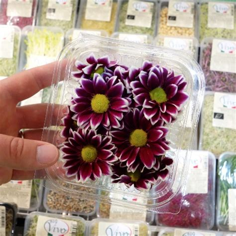 fiori edibili frammenti da fruit innovation le principali novit 224 di