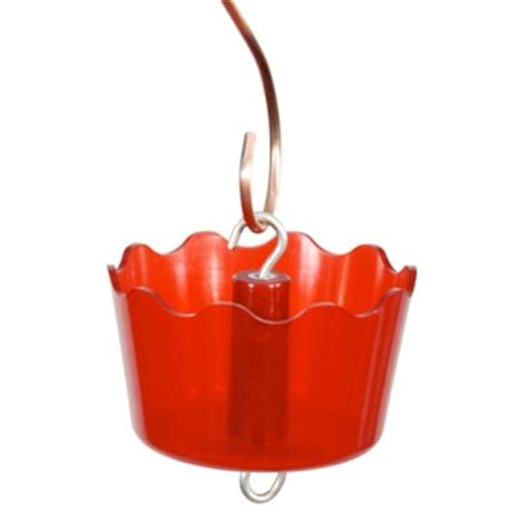 audubon ant guard for hummingbird feeder myagway