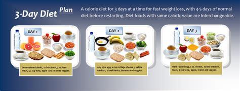 3 Day Detox Diet Plan Indian by Diy Low Carb Baking Mix Workout Program Pdf 3 Day Diet