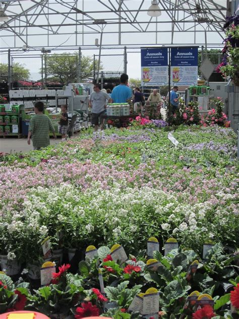 Lowes Gardening Center by Lowes Bayshore Nursery And Garden Center Kent Island Md