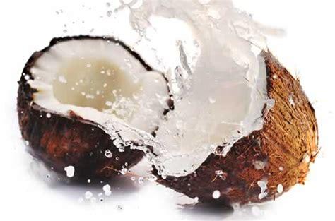 kokosnuss le kokosnuss exot mit relativ vielen kalorien apotheken