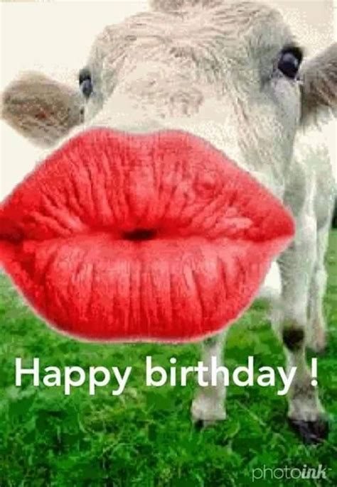 444 birthday messages and best wishes for lover 444 best happy birthday images on birthdays