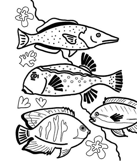 coloring pages of saltwater fish saltwater fish coloring pages reef beautiful coral grig3 org