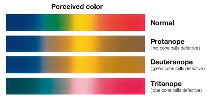 color vision color vision defects achromatopsia color blindness monochromatopsia