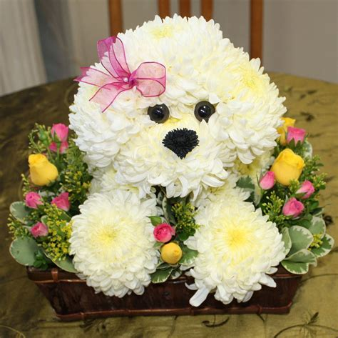 puppy flowers puppy flower arrangements thin