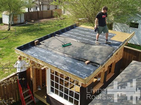 Green Roof Shed Plans by Diy Green Roof Shed Plans Living Roofs Inc