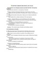 Chapter 13 Meiosis And Sexual Cycles Worksheet Answers