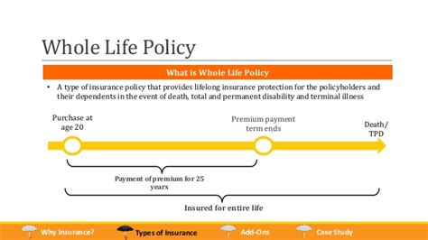 whole life policy types of insurance policies owned by singaporeans