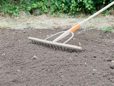 Make Landscape Rake How To Prepare Soil For Planting A Lawn How Tos Diy